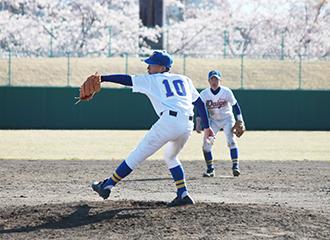 三沢市野球協会     イメージ
